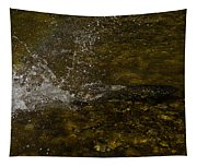 Of Fishes And Rainbows - Wild Salmon Run In The Creek Tapestry
