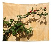 Of Light And Shadow - Bougainvillea On A Timeworn Plaster Wall Tapestry