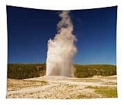 Old Faithful IIi Tapestry