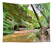 Old Man's Gorge Trail And Caves Hocking Hills Ohio Tapestry