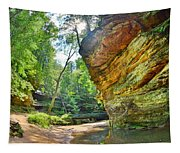 Old Man's Gorge Trail Hocking Hills Ohio Tapestry