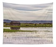 Old Shed On Marsh Tapestry