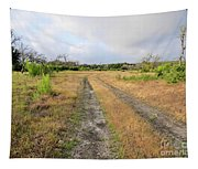 Old Texas Roads Tapestry