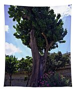 Old Tree In Palermo Tapestry