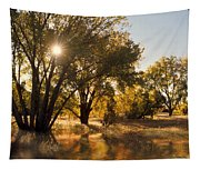 Oliver Sunbursts Tapestry