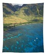 Olowalu Aerial Tapestry