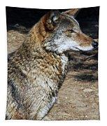 On Alert Tapestry
