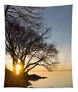 On Fire - Bright Sunrise Through The Willows Tapestry