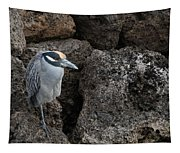 On The Rocks - Yellow-crowned Night Heron Tapestry
