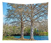 On The San Marcos River Texas Tapestry
