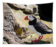 One Puffin In Iceland Tapestry