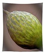 Onion Flower Macro Tapestry
