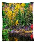 Ontario Tarn Tapestry