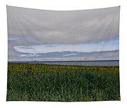 Open Vista. Lizard Point. Tapestry