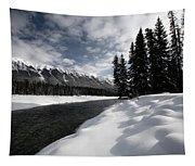 Open Water In Winter Tapestry