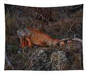 Oranage Iguana Tapestry