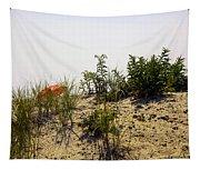 Orange Beach Umbrella  Tapestry