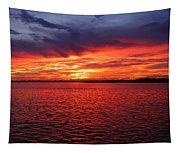 Orange Burst At Daybreak Tapestry