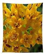 Orange Butterfly Weed Tapestry by Shelli Fitzpatrick
