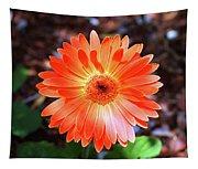 Orange Daisy Tapestry