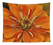 Orange Orange Orange Tapestry