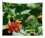 Orange  Red Flowers Tapestry