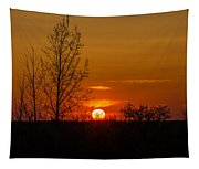 Orange Sunset Through The Trees Tapestry