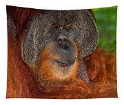 Orangutan Male Tapestry