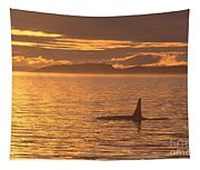 Orca Killer Whale Tapestry