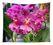 Orchid Aliceara Marfitch Tapestry