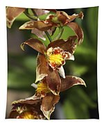 Orchid Curve Tapestry