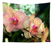 Orchid Delight Tapestry