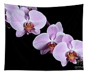 Pink Orchid I Tapestry