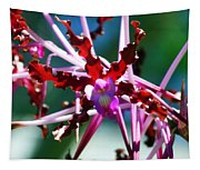 Orchid Spider Tapestry