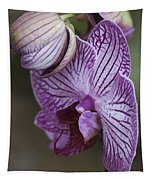 Orchid Strips Tapestry