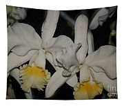 Orchids Satin Tapestry