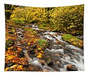 Oregon Autumn Beauty Tapestry