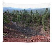 Oregon Landscape - Crater At Lava Butte Tapestry