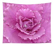Ornamental Cabbage With Raindrops - Square Tapestry