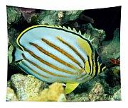 Ornate Butterflyfish Tapestry