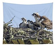 Osprey Family Portrait No. 2 Tapestry