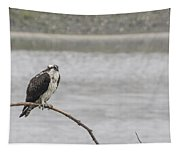 Osprey Looking Over The Rogue River Tapestry