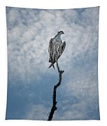 Osprey On Top Of The World Tapestry