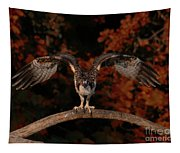 Osprey Ready For Take Off Tapestry