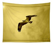 Osprey Soaring Into Golden Sunlight Tapestry