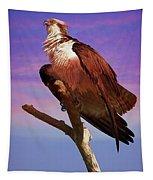 Osprey Solo Tapestry