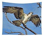 Osprey Wing Stretch Tapestry