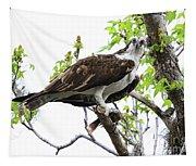 Osprey With Snack Tapestry