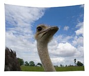 Ostrich High In The Sky Tapestry