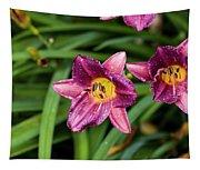 Purple Stella Doro Day Lily Tapestry